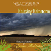 Relaxing Rainstorm: Nature Sounds for Serene Meditation