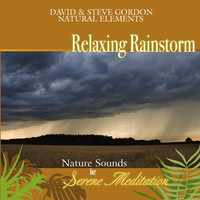 Relaxing Rainstorm: Nature Sounds for Serene Meditation by David & Steve Gordon Natural Elements